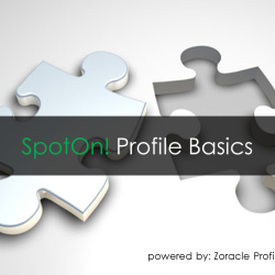 SpotOn! Basics, Franchisee Profiling Tools, franchise development