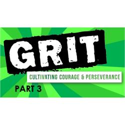 grit 3
